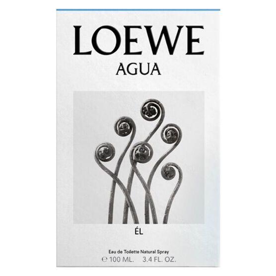 LOEWE      AGUA HOMME    EDT  100ML
