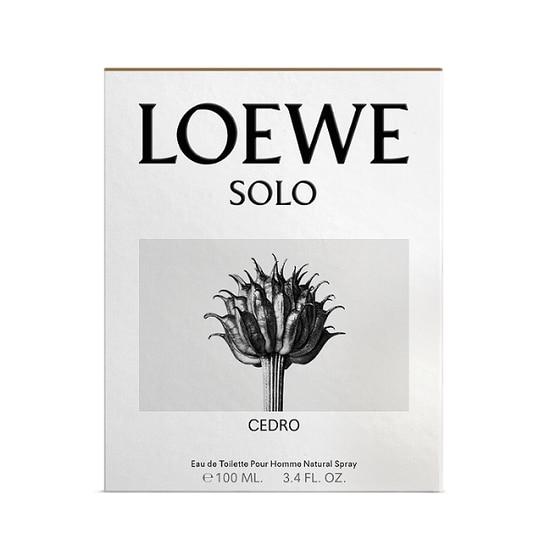 LOEWE      SOLO LOEWE    EDT  100ML