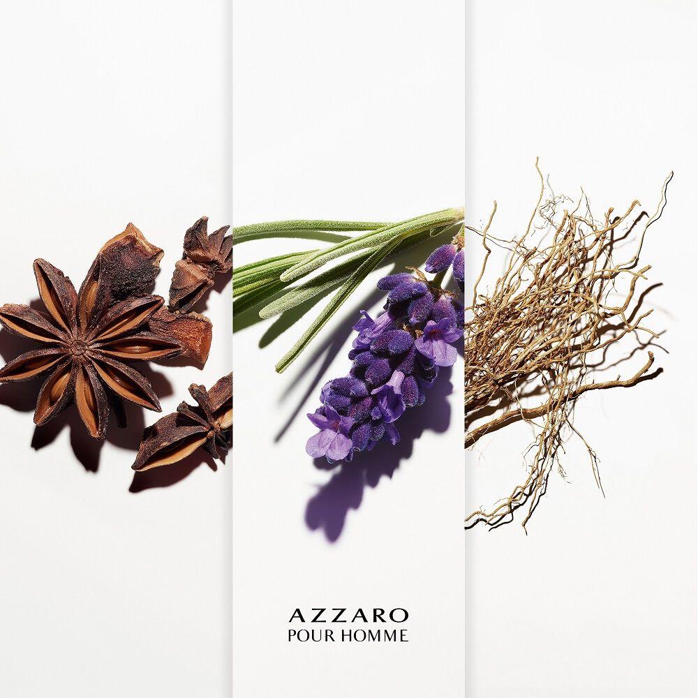 AZZARO     AZZARO HOMME  EDTV 200ML